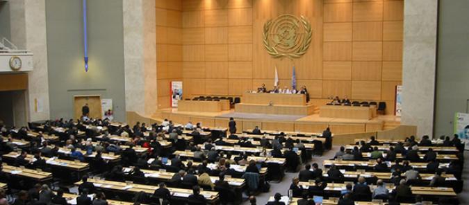Plena inclusión se une al Comité de la ONU sobre Derechos del Niño en sus reclamaciones sobre educación inclusiva